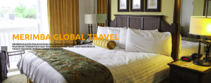 portfolio dwdproject - merimba global travel